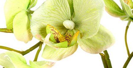 silk wedding orchid