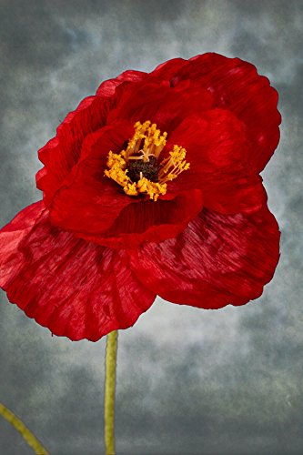 faux poppy flower