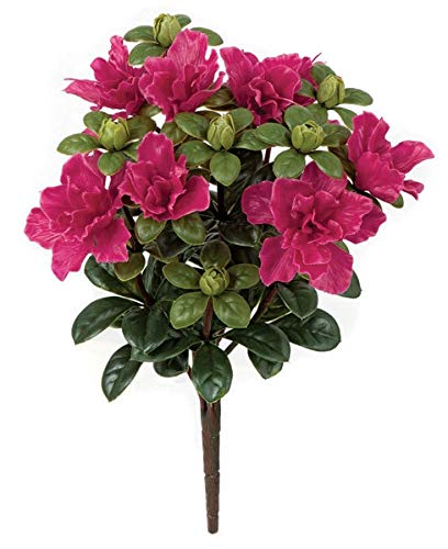 silk azalea bush