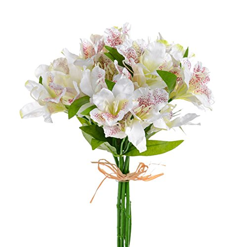 cream alstroemeria flower