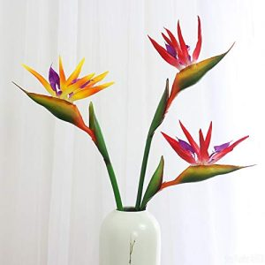 Silk Bird of Paradise Flower