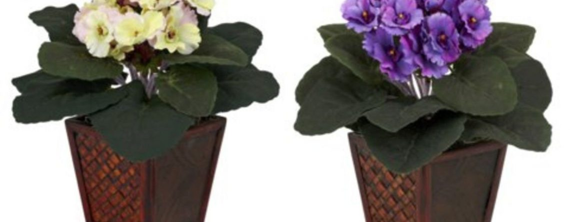 artificial african violet with vase