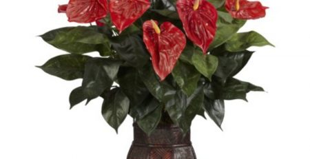 artificial anthurium silk plant