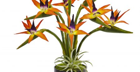 bird of paradise silk arrangement