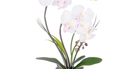 silk orchid arrangements