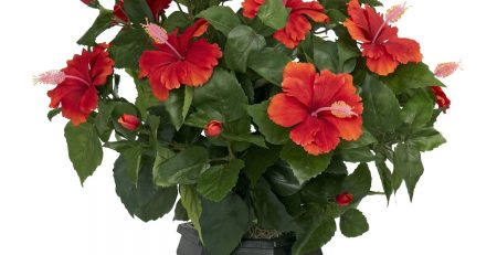 Nearly Natural 6691 Hibiscus with Black Hexagon Vase Decorative Silk Plant