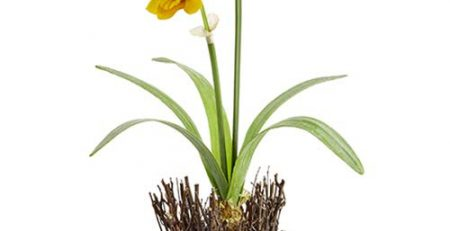 Silk Daffodil Flower Arrangement