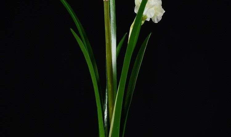 BIG-DEAL BD_6pcs 40cm Emulation Artificial Narcissus
