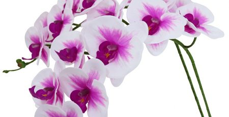Htmeing 38 Inch Artificial Phalaenopsis Flowers Branches Real Touch
