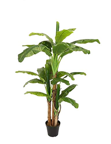 amerique gorgeous 65 musa basjoo banana tree artificial silk plant with uv protection with nursery plastic pot feel real technology super quality feet green 0